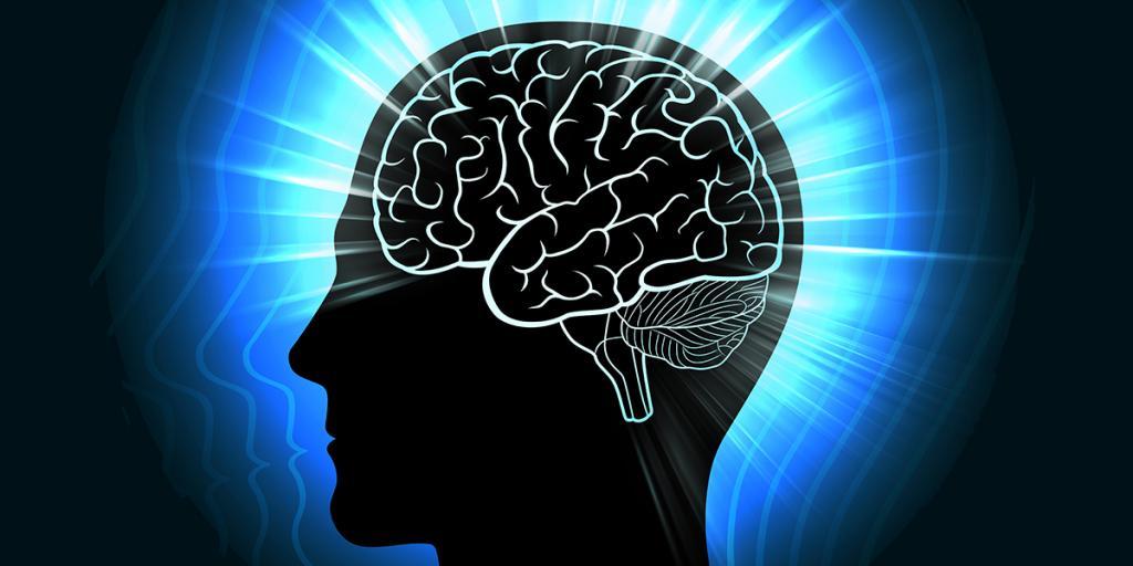 мозг со светом