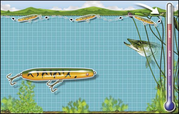 береговой спиннинг для ловли щуки
