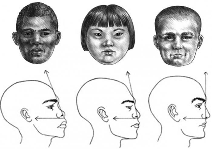 профиль лица