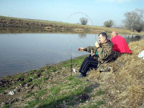 где отдохнуть на волге с рыбалкой в