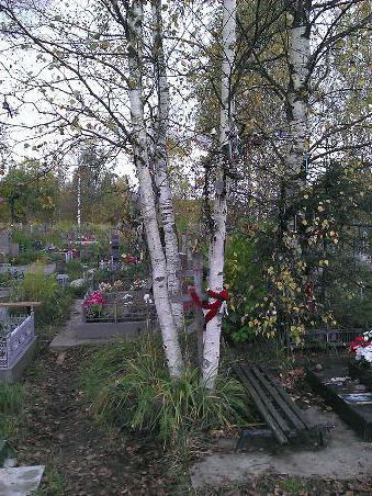 ковалевское кладбище как доехать