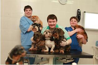 ветеринарная клиника в липецке