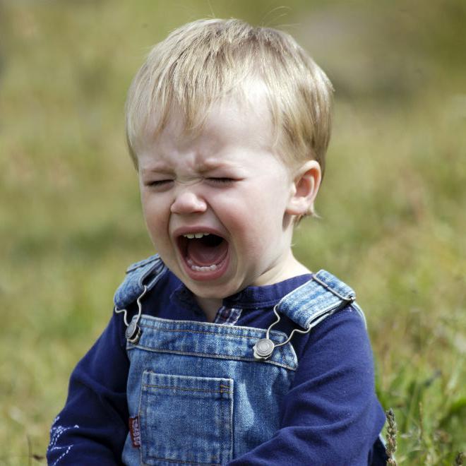 истерики у ребенка комаровский