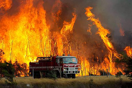 ликвидация последствий стихийных бедствий