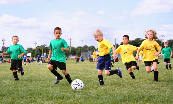 спортивные виды спорта для детей