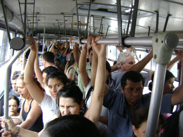 толкование сна автобус