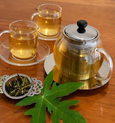 печеночный чайный сбор