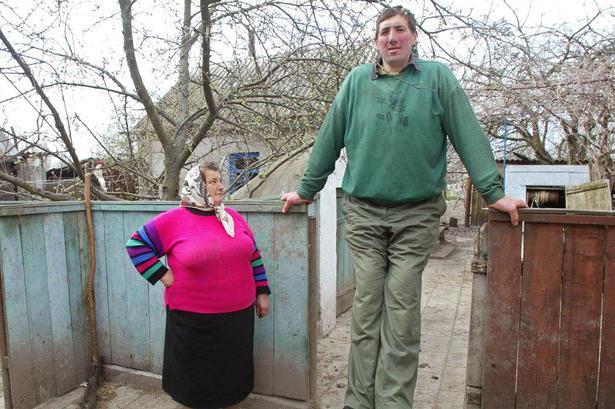 высокие люди