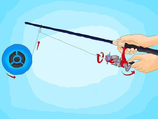 Что такое бекинг в рыбалке