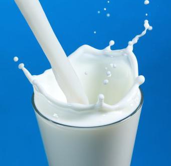 сколько литров молока способна давать одна корова