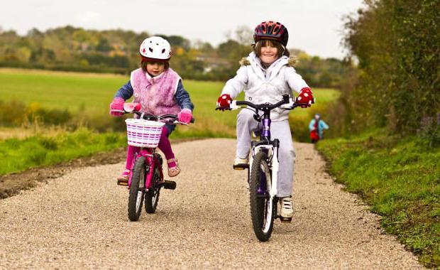 обязанности велосипедиста обж