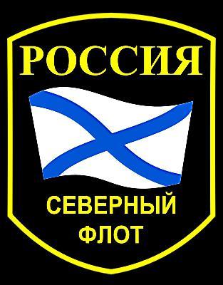 Северный флот ВМФ России
