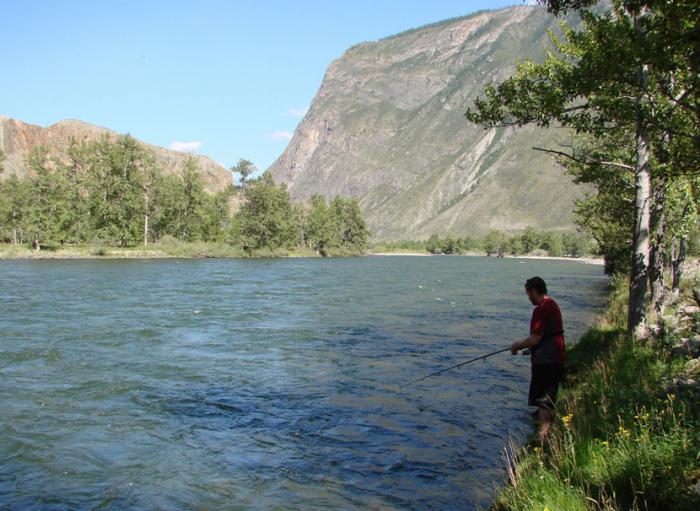 рыбалка на озере белое алтайского края