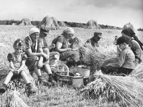 Какие причины тормозили развитие крестьянских хозяйств ответ