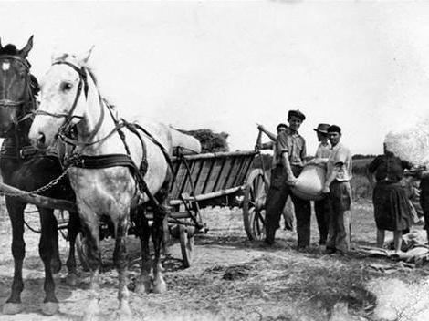 Какие причины тормозили развитие крестьянских хозяйств в 1861