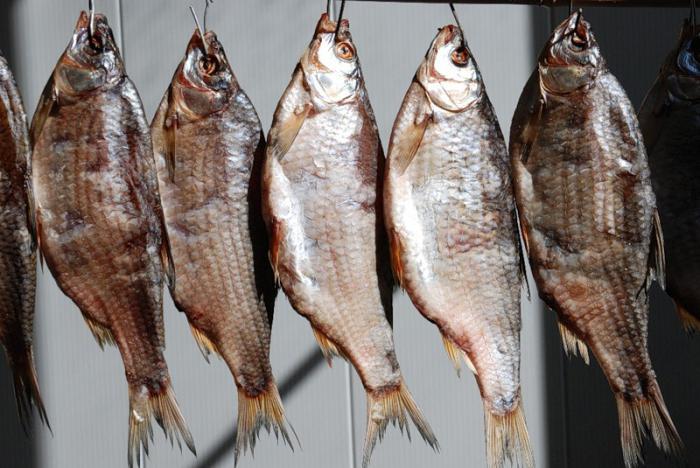 Производство вяленой рыбы в домашних условиях
