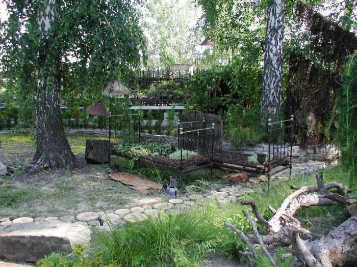 ботанические сады Новосибирска