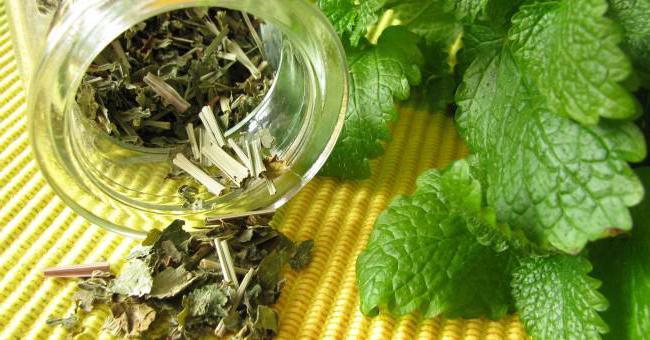 чай гринфилд с мелиссой польза и вред