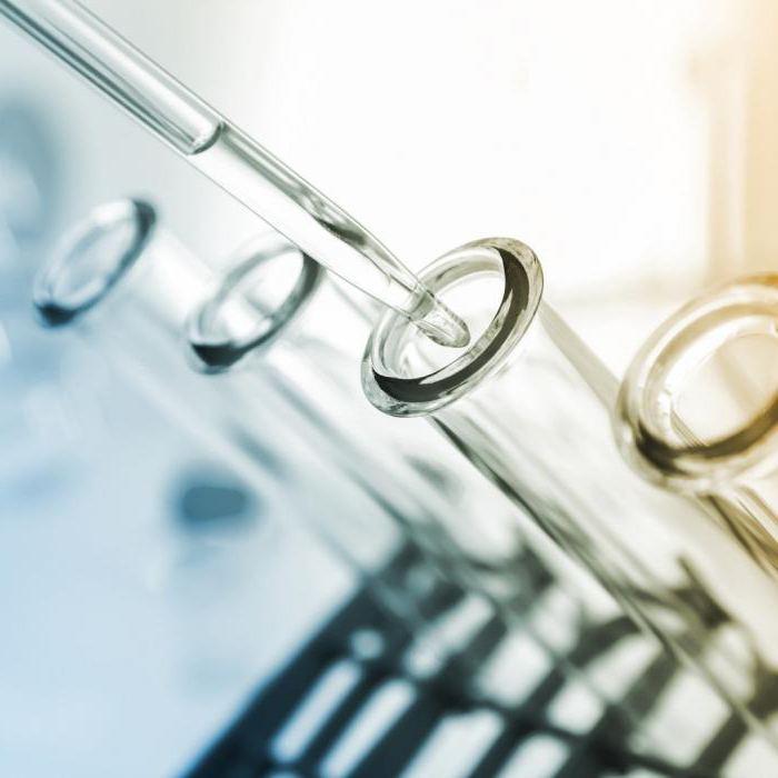 следы белка в моче при беременности бактерии в моче