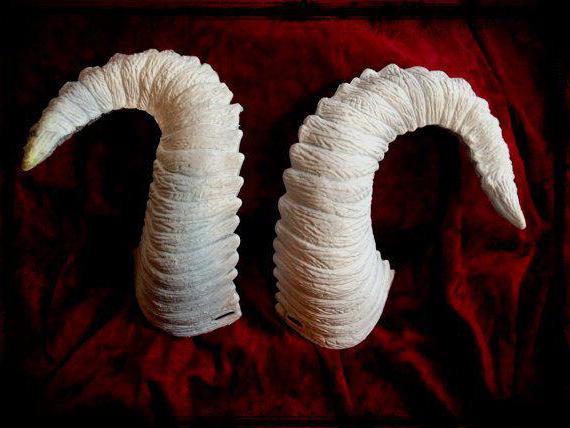 Как сделать рога козы своими руками из бумаги (фото)?