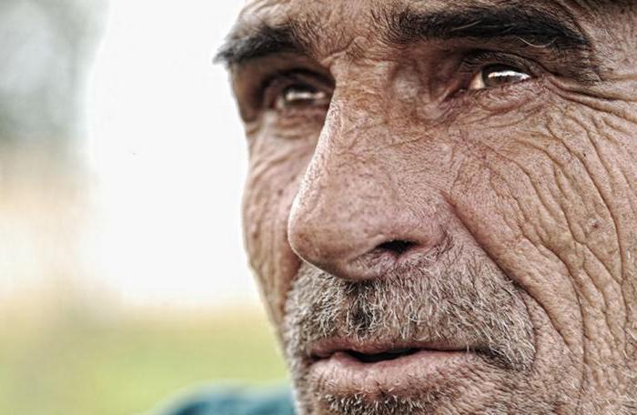 какого числа день пенсионера