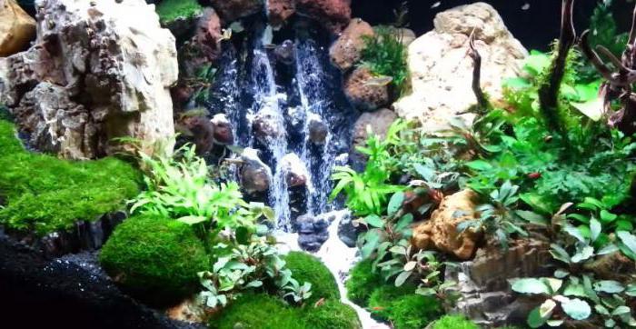 Водопад в аквариуме своими руками пошаговая инструкция 20
