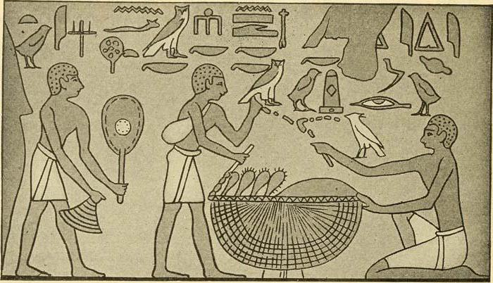 ancient egypt vs ancient mesopotamia essay Ancient egyptians had an easier life compared to the other ancient civilizations because of their reliable agriculture system geography played a big role, especially in farming due to geography, mesopotamia and egypt had different farming methods, weathers, environment, and flooding seasons.